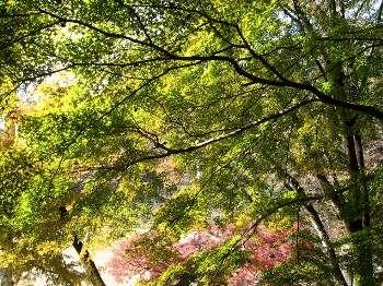 永山公園 3