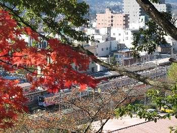 永山公園 5