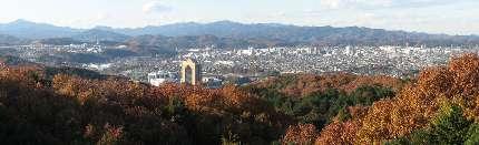 飯能市(桜山展望台)