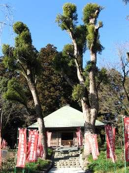 阿弥陀堂(塩船観音)