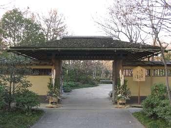 日本庭園 1(昭和公園)