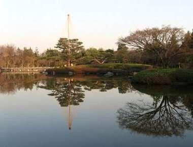 日本庭園 3(昭和公園)