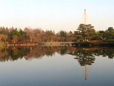 日本庭園 4(昭和公園)