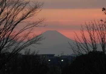 富士山 (昭和公園)