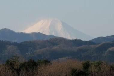 富士山 (塩船観音)