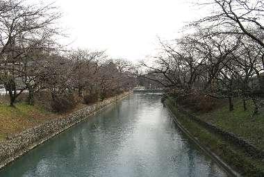 玉川上水 (羽村市)