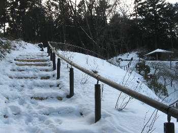 梅の公園 2(雪)