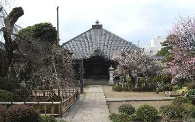 金剛寺 2