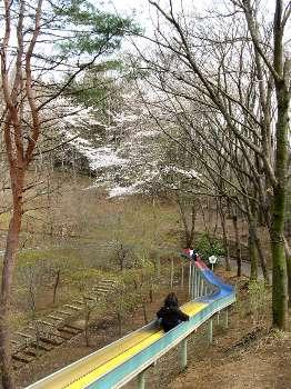 ローラー滑り台(花木園)