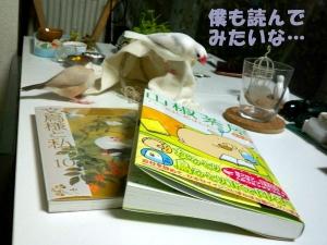 鳥漫画〜♪