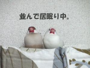 ねむねむ〜