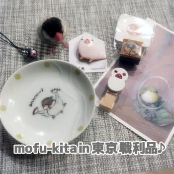 mofu-kita戦利品色々♪