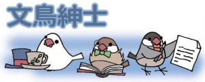 文鳥紳士in書斎