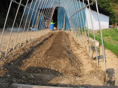 パプリカの植え床は植木鉢の様になっています
