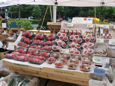 フルーツトマト、水耕栽培キュウリ、菌床椎茸