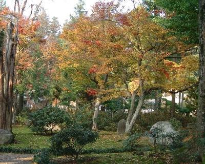 飯田市の開善寺2
