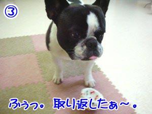 ボクの勝ちぃ〜♪