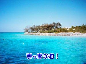 南国パラダイス〜(´∀`*)