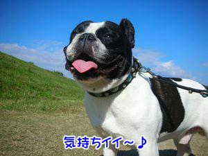 エエ天気や〜♪