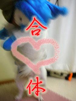 (*´д`*)エクスタシィー
