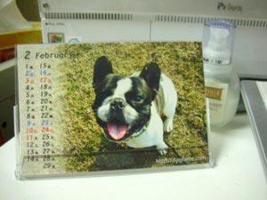 文太カレンダー2月
