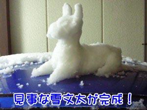 ウサギみたいにも見えるけどーっ