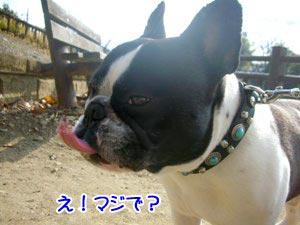 ラッキー☆
