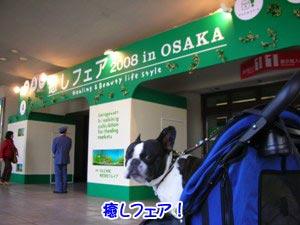 インテックス大阪です♪