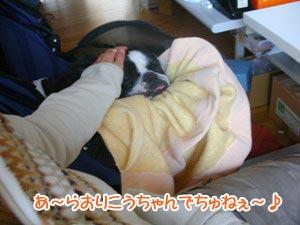 ムフフフ〜♪