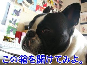 じっちゃんの名にかけて!!(←意味不明)