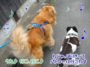 二人でラブラブパトロ〜ルぅ〜♪