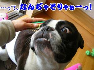 うっひゃぁ〜〜!