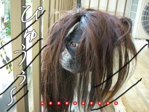 やだ。風で髪が乱れちゃったわ。