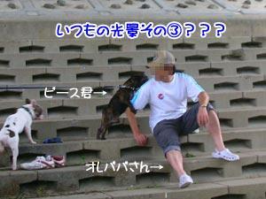オレパパさん〜!(*´Д`)/ヽァ/ヽァ