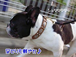 るぅ〜るるぅ〜♪