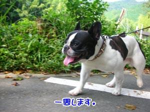 楽すぃ〜なぁ〜♪