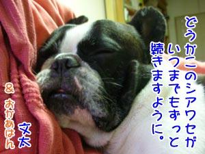 しあわせ〜 (*´ー`*)