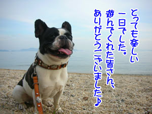 琵琶湖、いいねぇ♪