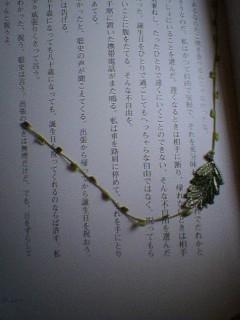 20060325_118407.jpg