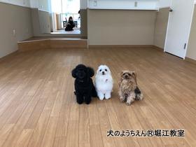 20180410suita (3).jpg