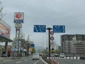 suita412 (4).jpg