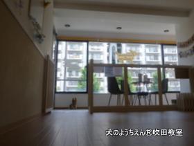 20180807sui (11).JPG
