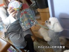 201191215sui (16).JPG
