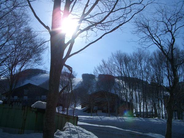 八甲田のいい朝です
