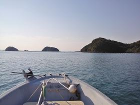 高島 釣り