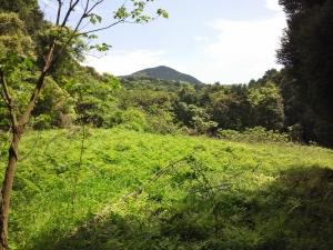 佐賀県武雄市の眉山