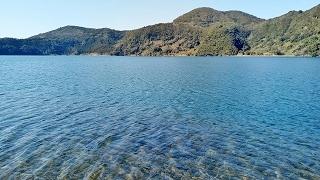 指宿 鰻池(うなぎいけ)