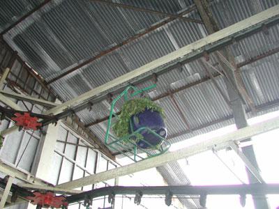 お茶工場2004.2