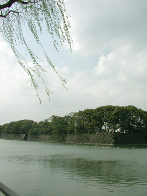 2008.4.4お濠