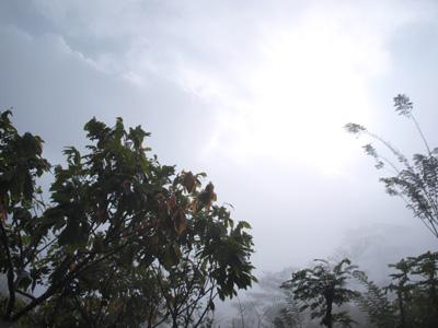 2009.8.17タナトラジャ・霧